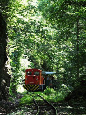 vonat7
