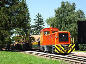 vonat6